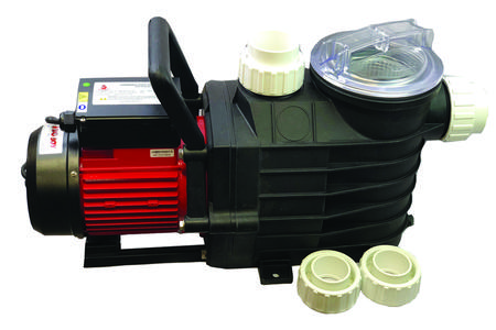 Buy BAD BOY ALPHA DUAL SPEED POOL PUMP in NZ.