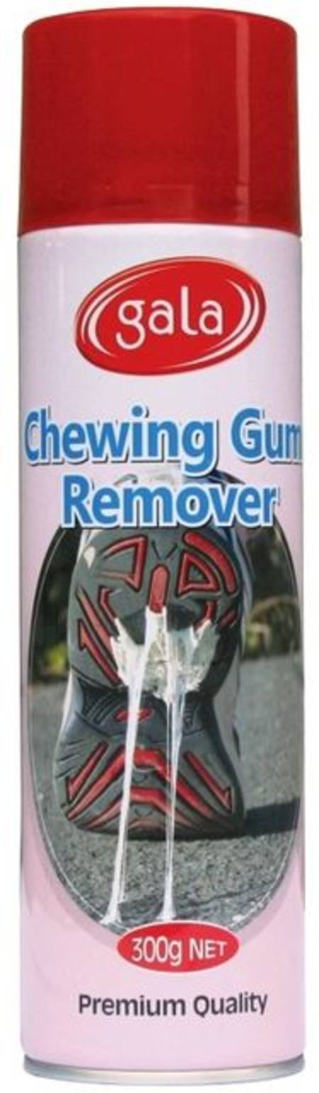 Chewing Gum Remover 300gm - Spraycan