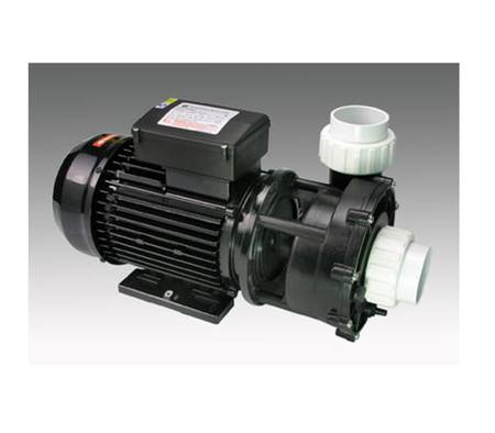 Delta Spa Pump 0.3/2.0hp